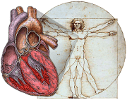 best cardiology books
